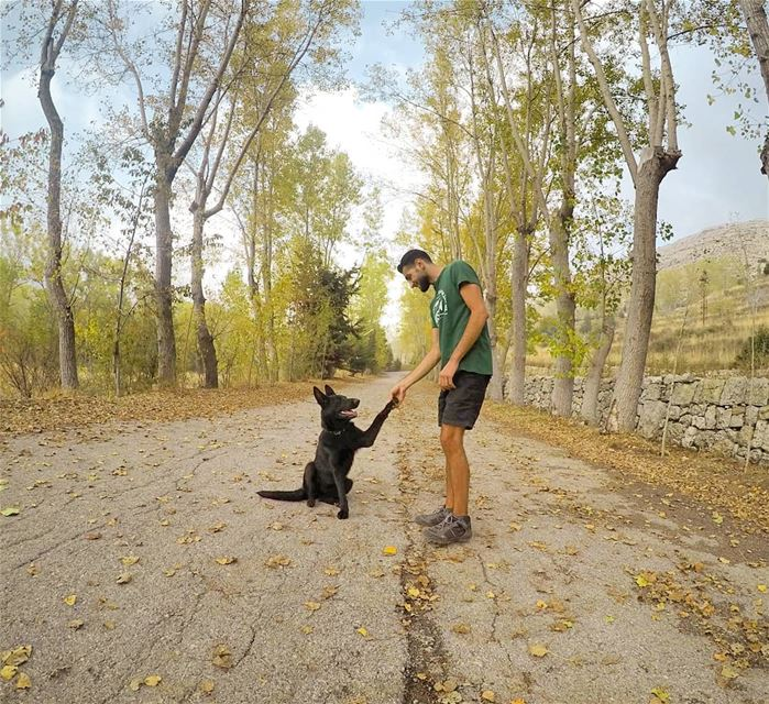 Man's Best Friend 🐶🍂🍃 (El Laklouk, Mont-Liban, Lebanon)