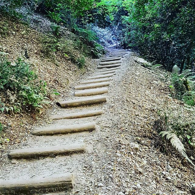 The world is made of stairs, those who go up and those who go down.... (Chouène, Mont-Liban, Lebanon)