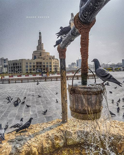 Art is the daughter of freedom. * Friedrich Schiller * insta_lebanon ... (Souq Waqif)