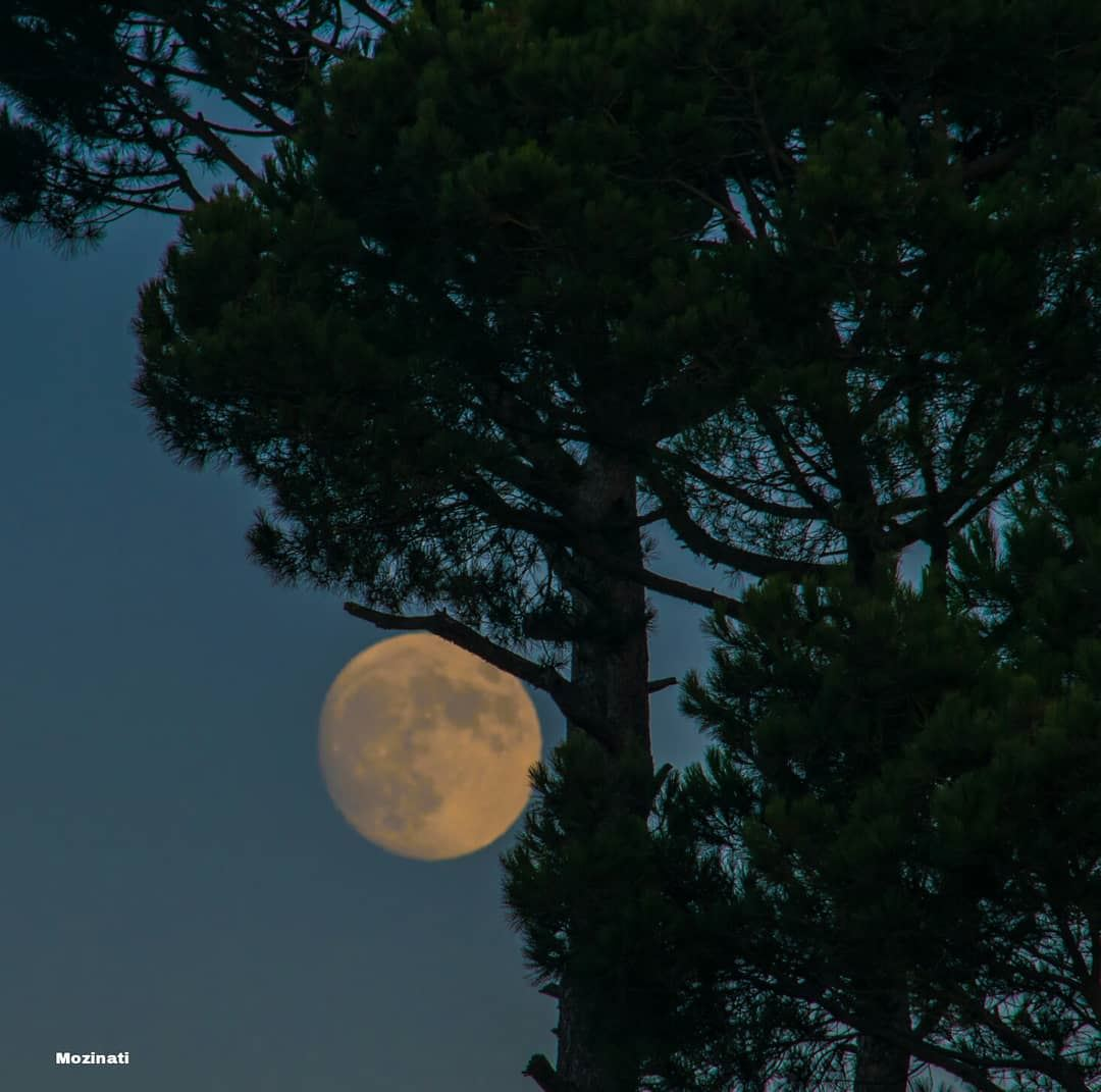 I look at the moon and it looks really beautiful!.. Then I look at you...... (Kfar Hoûné, Al Janub, Lebanon)