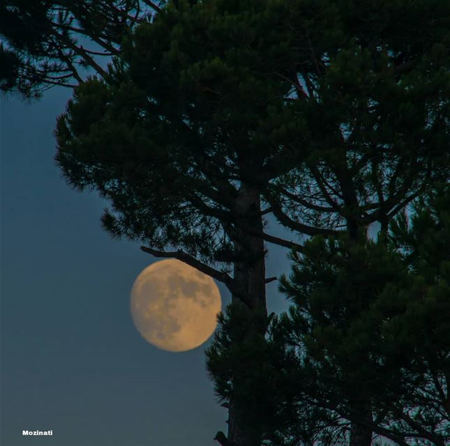 I look at the moon and it looks really beautiful!.. Then I look at you...... (Kfar Hoûné, Al Janub, Lebanon)