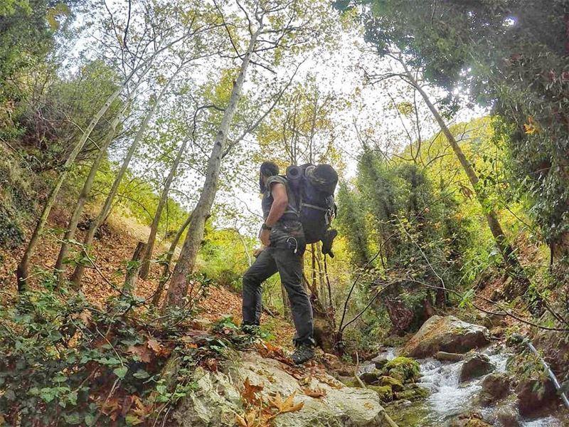 Nature baby🍃 (Tannurin At Tahta, Liban-Nord, Lebanon)