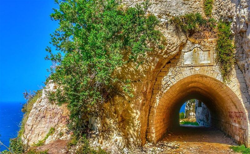 Good Morning 🌞...📍Hamate, Northern Lebanon 🇱🇧.... hamate ... (Hamâte, Liban-Nord, Lebanon)