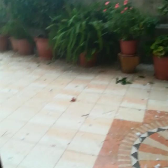 lebanon november weather storm tagsforlikes whatsuplebanon ...