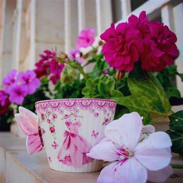 صباح الخير لابتسامتك التي تحيي الورد المقيم بين أضلعي...... صباحكم_ورد صب