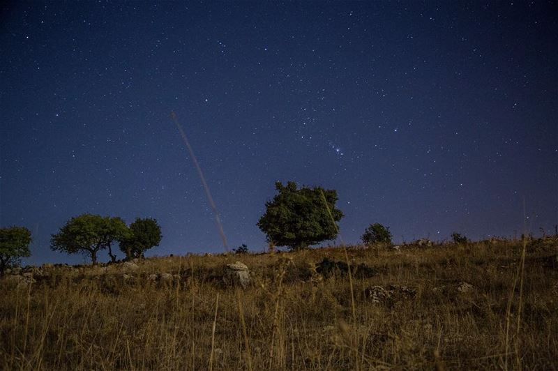 silence.......... orion midnight skies darksky stars ... (Chouf)