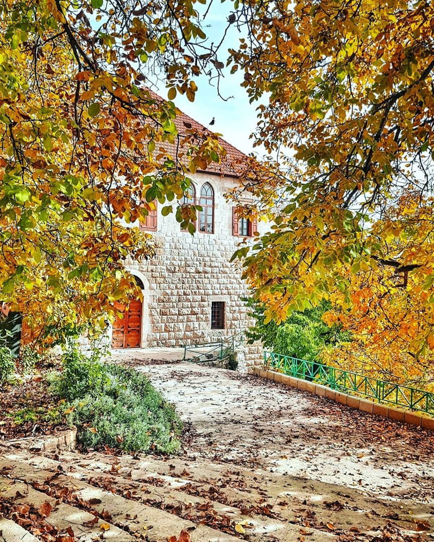 I've been so excited to post this photo, as it was taken in Ehden, one of... (Ehden, Lebanon)