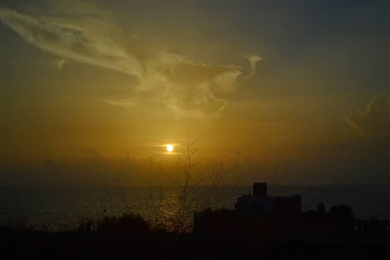 Low exposure sunset shot while the car was moving beirut lebanon... (Lebanon)