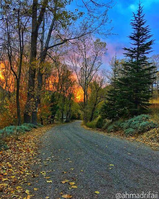 Autumn leaves are falling,,, Sun is setting,,, What a great and... (Akoura, Mont-Liban, Lebanon)