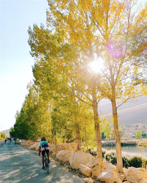 Yellow path 🚴‍♂️... cycling lebanon polyliban sports ...