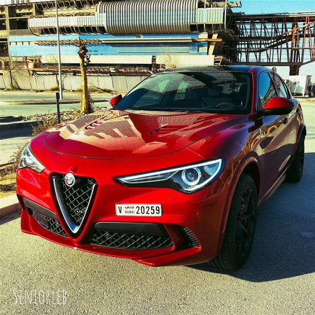 I had a blast in the new Alfa Romeo Stelvio Quadrifoglio, working on the... (Dubai, United Arab Emirates)