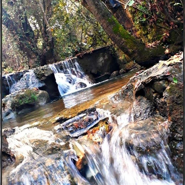 nature 🍁 river 🏞 november💫 livelovelebanon ❤✌🏼@nogarlicnoonions (Deir Doureet, Mont-Liban, Lebanon)