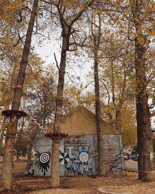 hide & seek ⛺.. lebanon autumn autumnleaves super_lebanon... (El Arz, Liban-Nord, Lebanon)