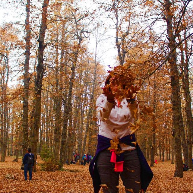 You are never too old to play in with leaves 🍁 fall goldentrails ... (غابة العزر-القموعة)