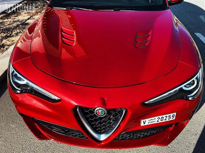Curves defines shape and shape defines beauty - Alfa Romeo Stelvio QV————— (Dubai, United Arab Emirates)