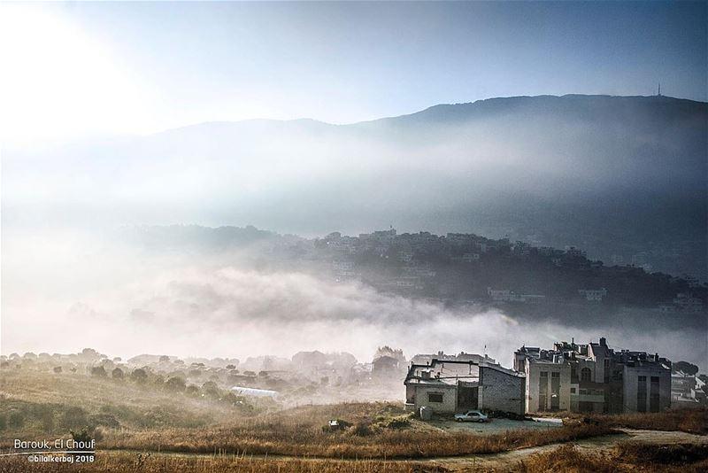 Morning Fog Attack ☁️☁️☁️—————————————— barouk chouf lebanon ...