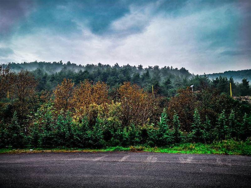 @artofvisuals earth_reflect @earth_reflect @viewbug @live.lovenature @worl (Al Qubayyat, Liban-Nord, Lebanon)