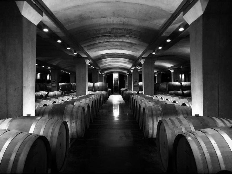batroun البترون_سفرة @ixsirwine ixsir wine winery vineyard ... (IXSIR)