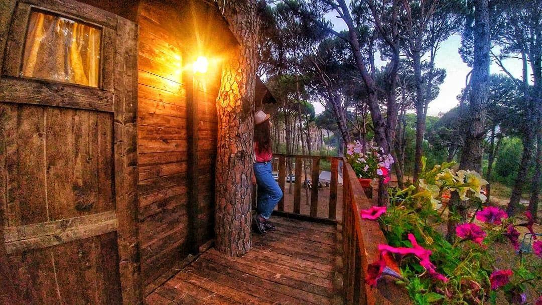 TREE HOUSE and DREAMS 🌳✨........ insta_lebanon lebstory ...