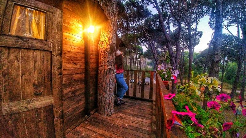 TREE HOUSE and DREAMS 🌳✨........ insta_lebanon  lebstory ...