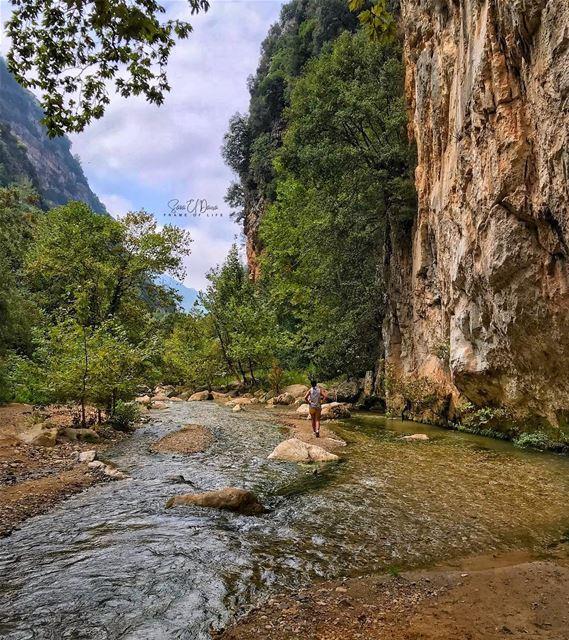 Always take the scenic route🏃🏽♀️🌲 (Yahshush, Mont-Liban, Lebanon)
