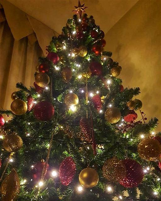 batroun christmas tree christmastree christmaslights christmastime ا (Batroûn)
