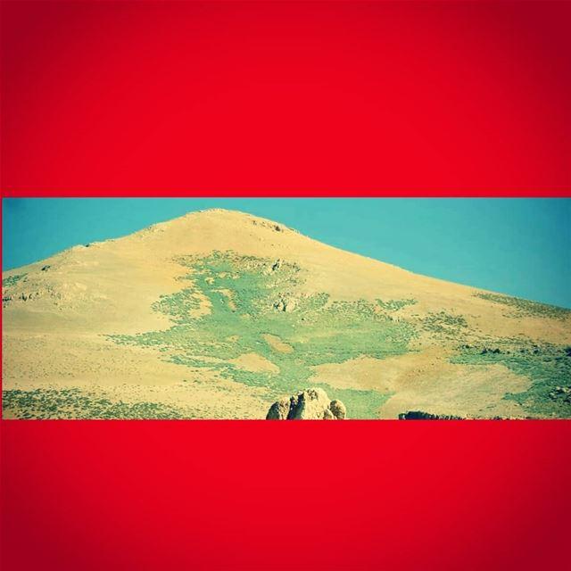 happyindependanceday independanceday flag lebanonflag🇱🇧🇱🇧 ... (Qurnat as Sawda')