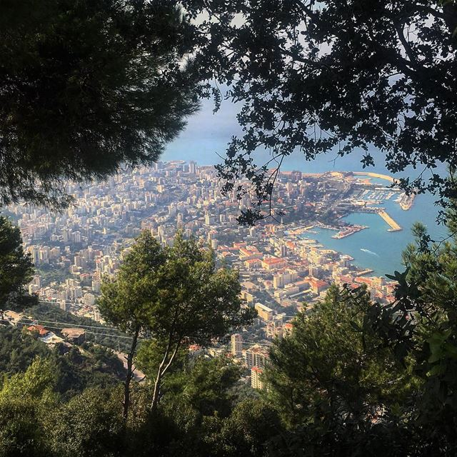 Between the trees.... jounieh  natgeoyourshot  iamatraveler  bnw_rose...