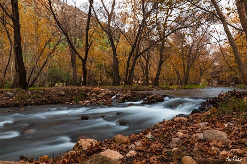 Akkar's heaven 🍁🍁.... waterfall lake river paradise watershot... (North Governorate)