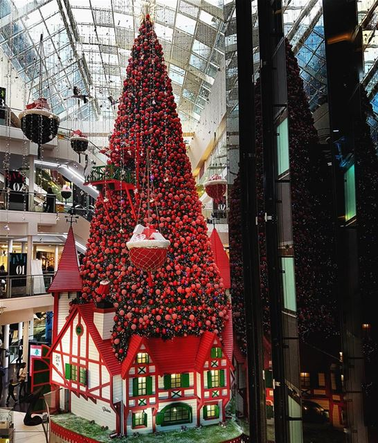 Christmas is our favorite time of the year!🎄... (LeMall)