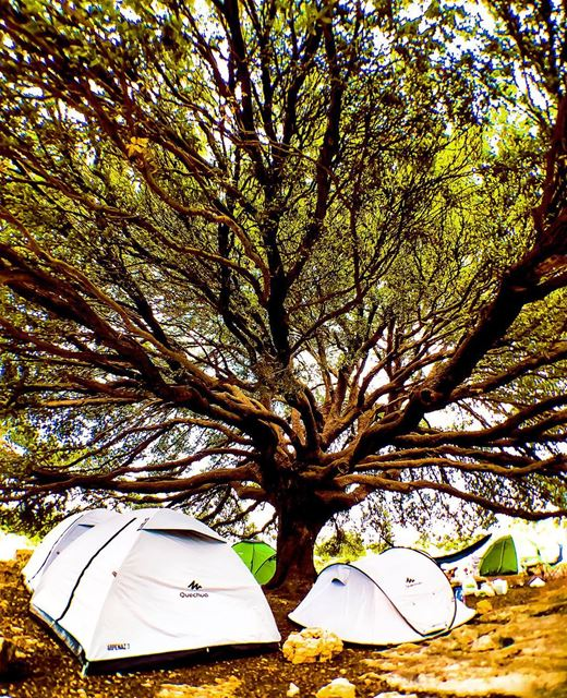 Not your average site camp with @decathlonleb topmycampingspot ... (Batroun District)