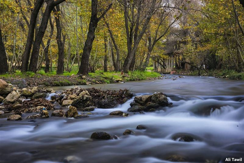 🏞 longexposure nature naturephotography beautiful instagood ... (North Governorate)