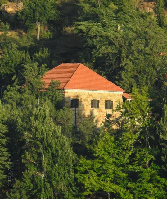 Autrefois, on aimait et craignait la nature, puissante, imprévisible comme... (Ehden, Lebanon)