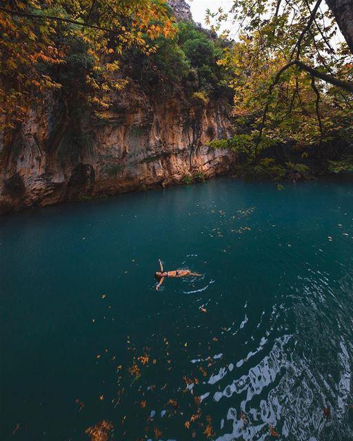 Nada como um merecido descanso de domingo desfrutando da mágica natureza... (Baakline, Mont-Liban, Lebanon)