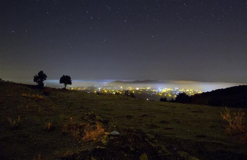 N I G H T........ tree nature Landscape sky livelovelebanon ... (Maaser El Shouf Cedar Reserve محمية ارز معاصر الشوف)