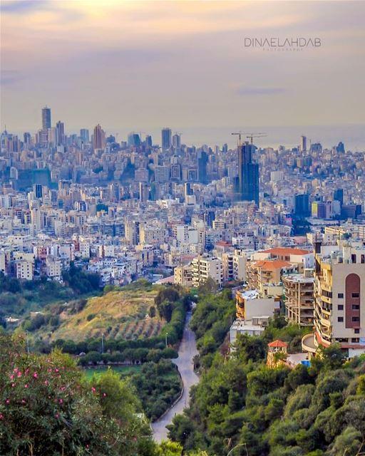 شريانٌ حَيَويٌّ ثانويّ.________________________________ lebanon ... (Beirut, Lebanon)