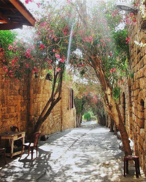 O charme das antigas e pitorescas ruas estreitas de Byblos para começar o... (Byblos, Lebanon)