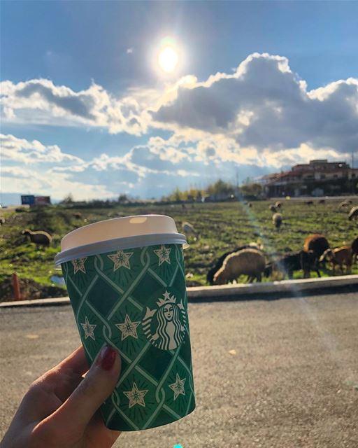 فنجان قهوة قد يقلب كل الموازين.... thisislebanon lovemycity ... (El Marj, Béqaa, Lebanon)