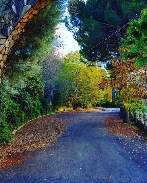 An autumn's path 😍😍😍Photo taken by @joechallitacouture  BeitChlela ... (Beit Chléla, Liban-Nord, Lebanon)