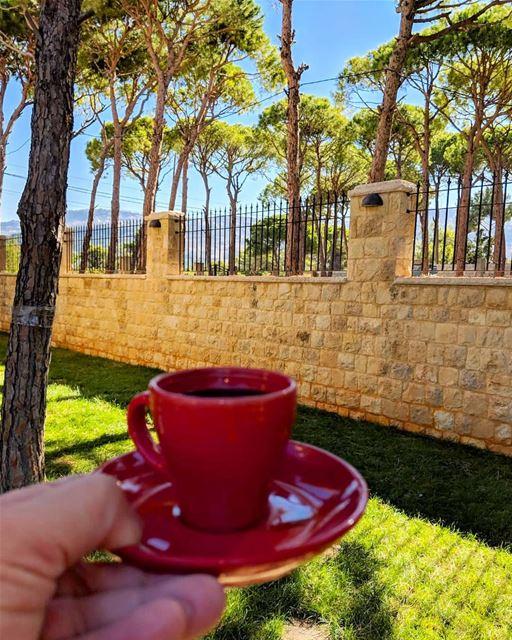 سلام لكل جزء جميل صافحت حروفه رائحة القهوة... . thisislebanon ...