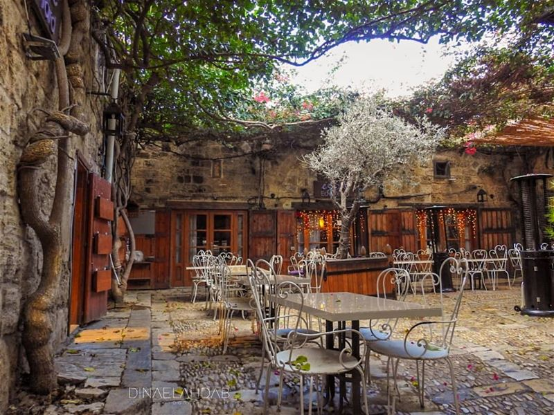 🎨______________ lebanon lebanon_hdr sunlight sunset byblos color ... (Byblos, Lebanon)