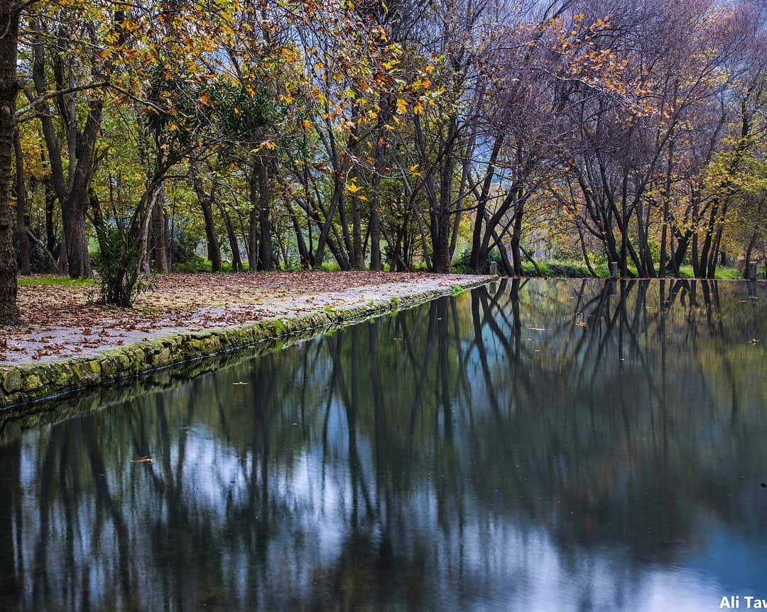🍁 nature naturephotography reflection autumnseason autumn ... (Akkar)
