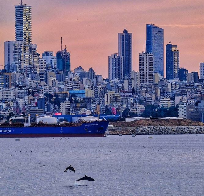 lebanon beirut sea sunset surprise city insta instagood instapic ...