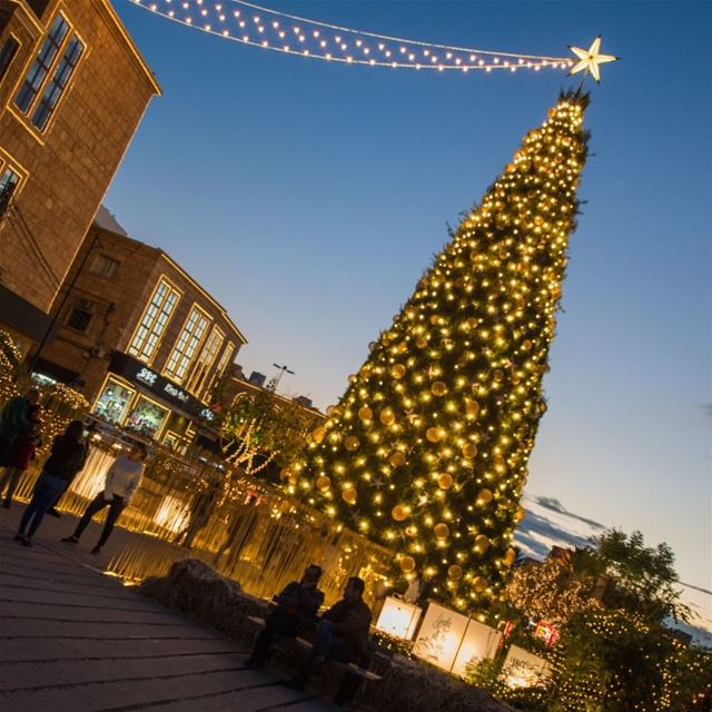byblos tree christmas jbeil ... (Byblos - Jbeil)