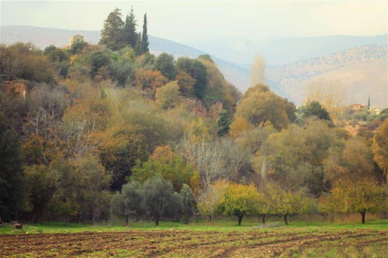 autumn🍁 vibes hermel hermel_city bekaa lebanon_pictures ... (El Hermel, Béqaa, Lebanon)