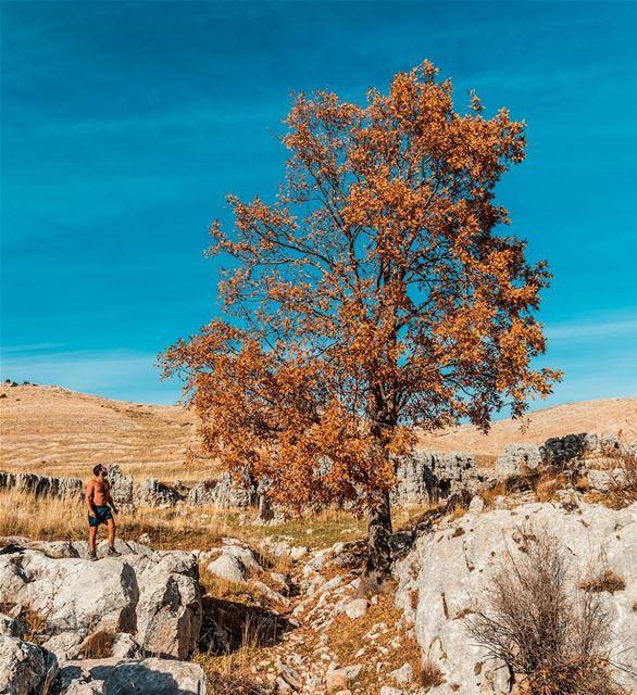 Autumn Heat 🍂 ExploreWithChris..📷@whereishaig lebanon Instagram ... (Akoura Laklouk)