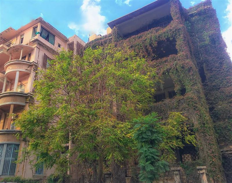 ✨𝐍𝐚𝐭𝐮𝐫𝐞 𝐢𝐬 𝐚 𝐡𝐚𝐮𝐧𝐭𝐞𝐝 𝐡𝐨𝐮𝐬𝐞 𝐛𝐮𝐭 𝐀𝐫𝐭-𝐢𝐬 𝐚 𝐡𝐨 (Beirut, Lebanon)