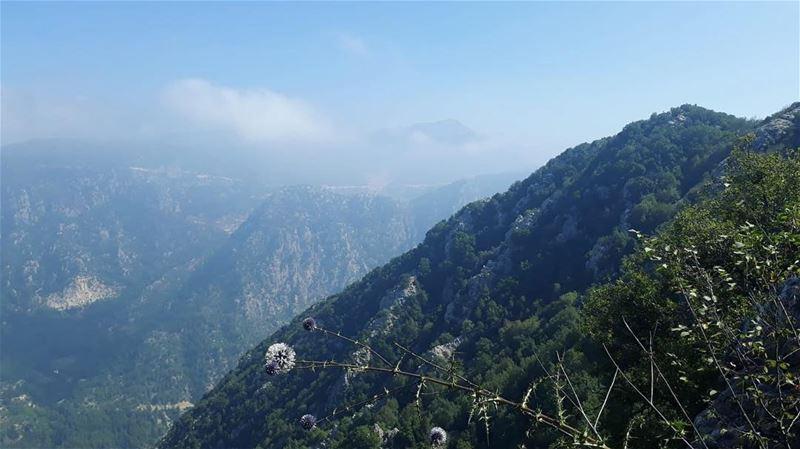 Beautiful Lebanon ❤️🙏🏻