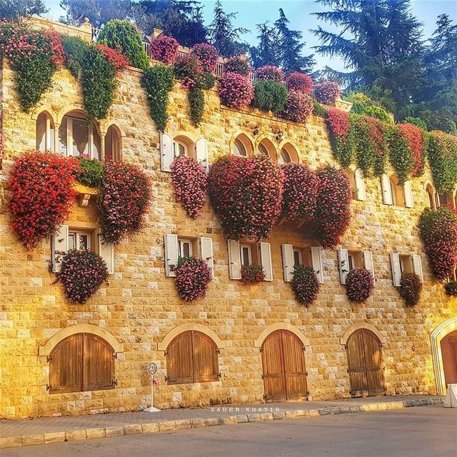 A work of art which did not begin in emotion is not art. *Paul Cezanne *... (Broummâna, Mont-Liban, Lebanon)