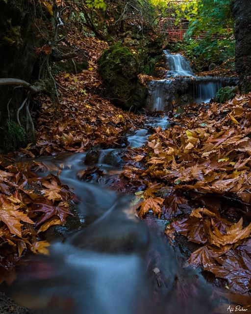 🍁🍁.... waterfall lake river paradise watershot landscape... (West Bekaa)